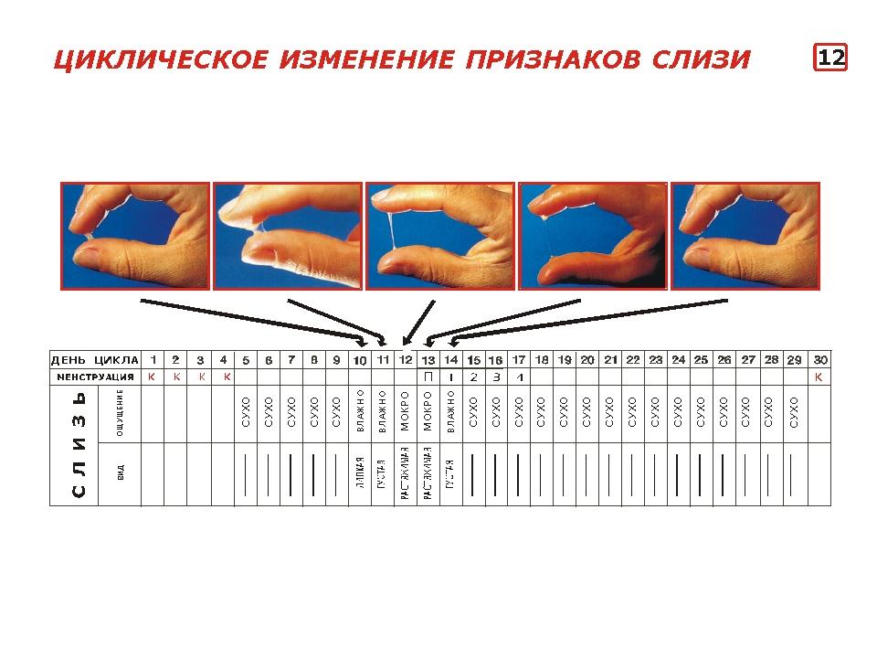 eroticheskoe-foto-devushki-s-kosoy